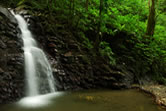 Enbas Saut Rainforest Trail & Waterfalls